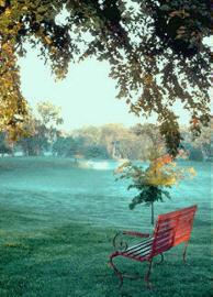 romantic_bench